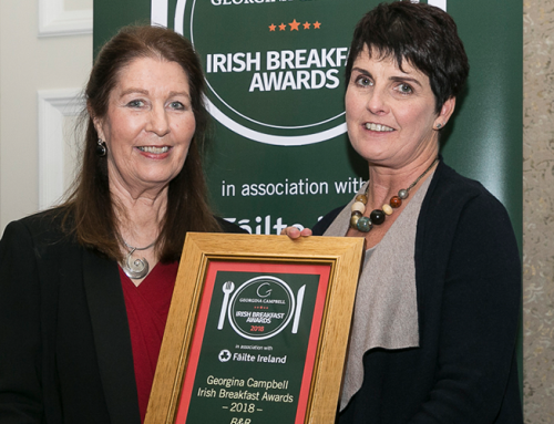 Winners on the double for Sligo tourism network