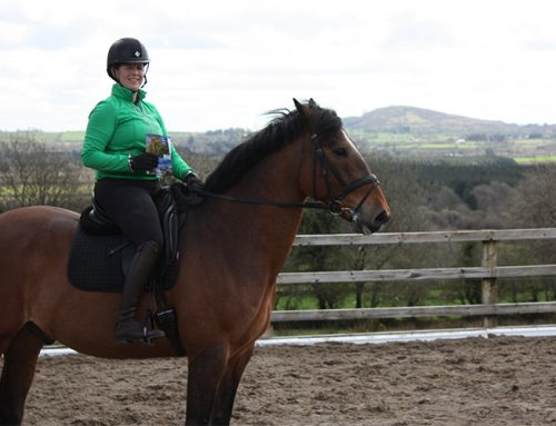 Horse riding with Simone Hession of Woodlands Equestrian Centre